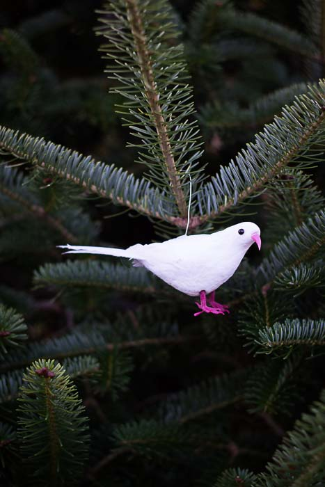Jesse Tree Ornament of dove