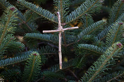 Cross Jesse Tree Ornament
